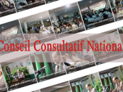 Conseil Consultatif National